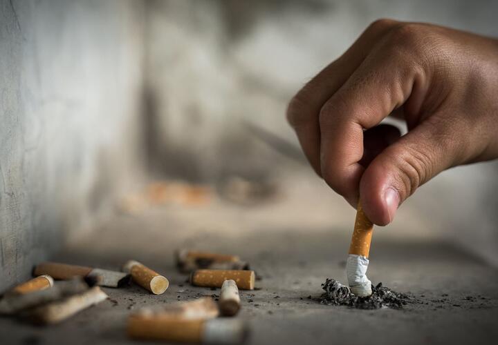 Ооо время краснодар табачные изделия купить сигареты садовод в контакте