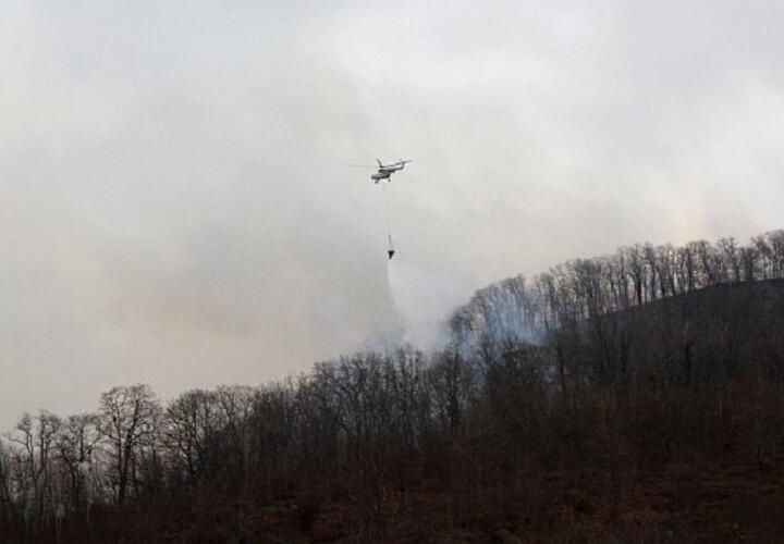 Уровень исполнения мер пожарной безопасности в нацпарке Сочи низкий