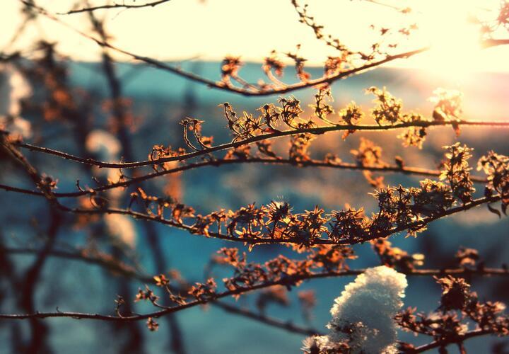Зима покидает Краснодарский край
