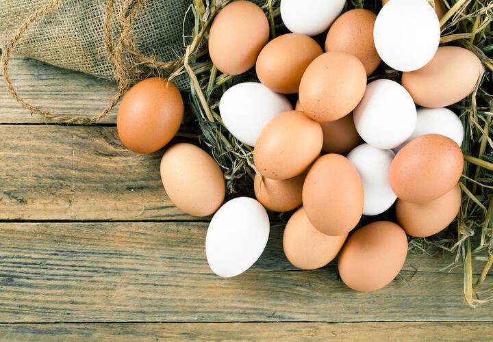 Птица и яйца станут еще дороже