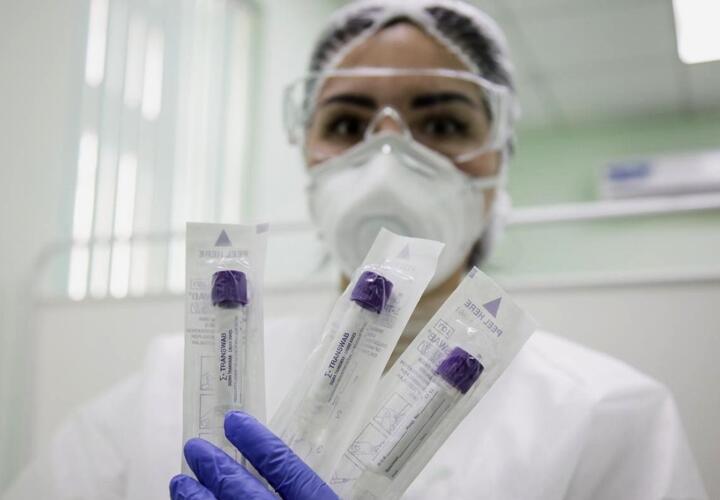 В Краснодарском крае коронавирус зафиксирован в 26 муниципалитетах