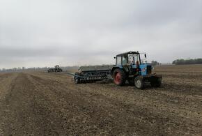 В Усть-Лабинском районе начался сев озимых