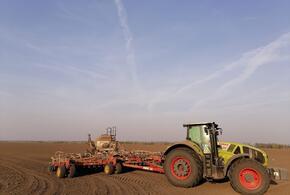 Растениеводы из устьлабинского «Рассвета» завершили сев пшеницы