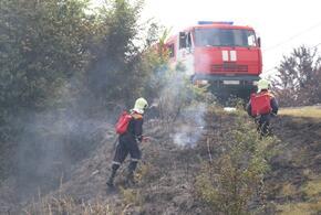 Сочинские пожары гасят совместными усилиями