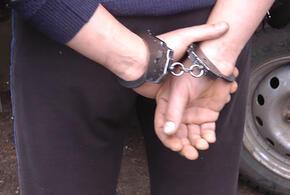Рецидивист изнасиловал и убил 11-летнюю девочку