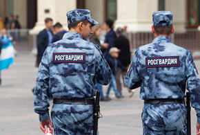 Штрафы за неповиновение полиции и Росгвардии могут повысить