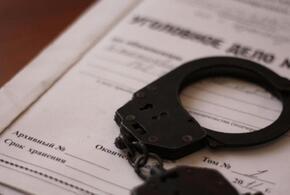 В Краснодаре завели уголовное дело на «женщину с молотком»