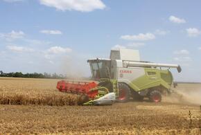 В «ПрогрессАгро»: ячмень убран, приступили к пшенице