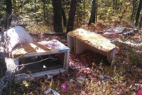 В Туапсе памятник природы завалили мусором