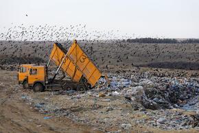 На Кубани в работе мусорного полигона выявили нарушения