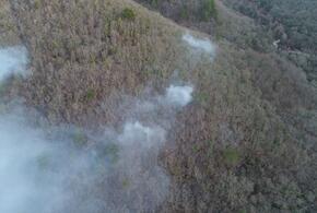 Причиной лесных пожаров на Кубани стал человеческий фактор