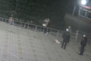 В Анапе хулиганы испортили главную елку курорта