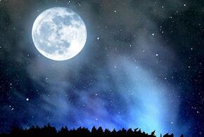 В будущем году россиянам пообещали пуск на Луну