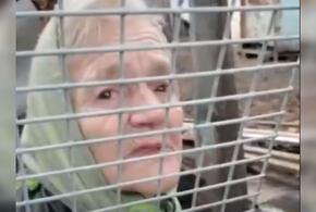 В Краснодаре одинокая пенсионерка живет в аварийном доме