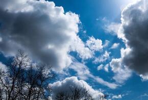 В Краснодарском крае будет по-весеннему тепло
