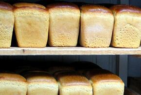 В Краснодарском крае дорожает хлеб