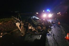 В Краснодарском крае в аварии с большегрузом погиб пенсионер