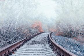 В Краснодарском крае задержаны четыре пассажирских поезда