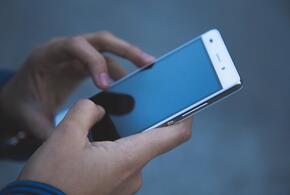 В Роскачестве назвали лучшие смартфоны осени