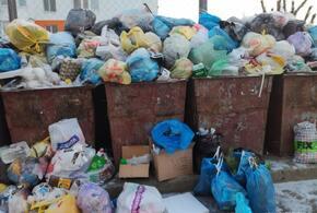 В Сочи оштрафована фирма по уборке ТКО