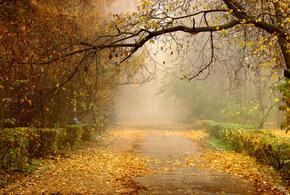 Во вторник в Краснодарском крае будет сухо и тепло