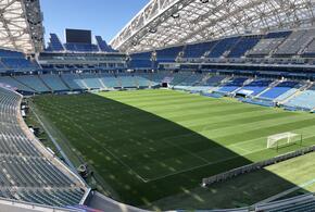 Дебютный матч 2021 года сборная России по футболу проведет в Сочи