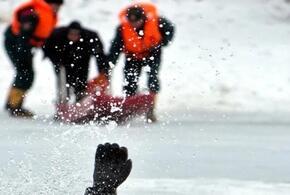 Десятилетний мальчик погиб, провалившись под лед