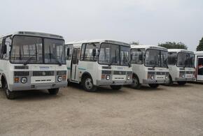 Краснодар лишился полусотни маршрутных автобусов