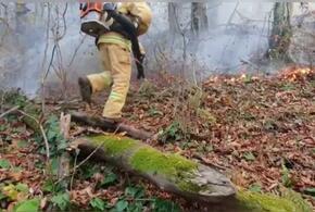 Кубанские спасатели потушили один из лесных пожаров