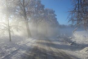 Метель и сильный снег ожидаются в Краснодарском крае