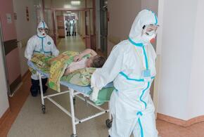На Кубани новые случаи коронавируса обнаружены в 34 муниципалитетах