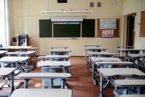 Сегодня у почти сотни кубанских школьников продолжились зимние каникулы