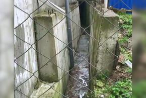 В Краснодарском крае из торгового центра вытекают сточные воды (ВИДЕО)