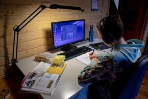 В Краснодарском крае на изоляции из-за коронавируса находятся 740 школьников