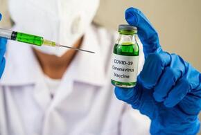 В России мошенники продают через интернет вакцину от COVID-19