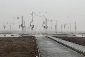В России вырос «светофорный лес»
