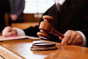 Мужчина, убивший пенсионера утюгом, получил 18 лет тюрьмы
