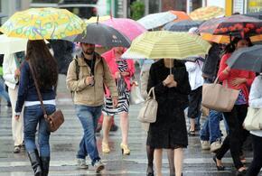 На Кубань придут тепло  и дожди