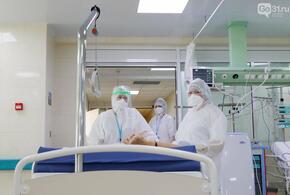 На Кубани за сутки умерли от ковида 15 пациентов