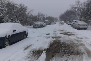 Ночной снегопад практически парализовал Краснодар