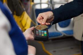 Повезло: в Крымском районе Кубани отказались повышать цены на проезд