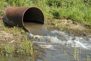 Прокуратура нашла незаконный сброс сточных вод в Темрюкском районе