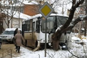 В Краснодаре пассажирский автобус врезался в дерево