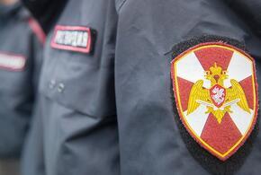 В Краснодаре росгвардейцы устроили погоню за пьяным автолюбителем