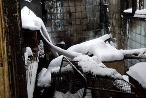 В Краснодаре сгорел частный приют для животных