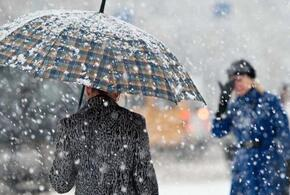 В Краснодарском крае 23 февраля будет идти снег