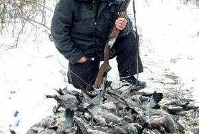 В Краснодарском крае браконьер расстрелял несколько сотен голубей