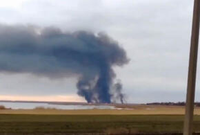 В Краснодарском крае горел камыш (ВИДЕО)