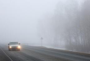 В Краснодарском крае ожидается туман и гололед