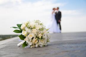 В Краснодарском крае стали реже разводиться и жениться
